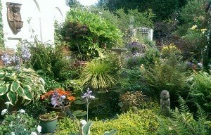 View of the Garden from the Counselling Room